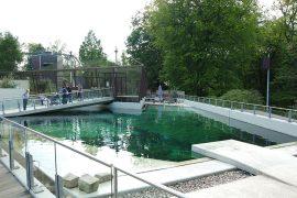 Tierpark Bochum – Seehundbecken und Vogelvoliere